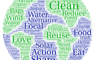 Sparkle Detox detox your world environmental realm