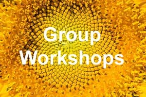 Groups Workshops