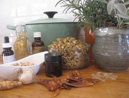 Herbal Medicine Making Workshops